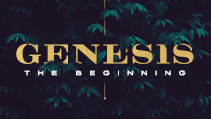 Genesis | The Beginning (Series)